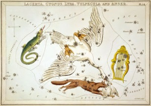 Vulpecula (Fox) constellation
